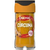 Cúrcuma DUCROS, frasco 37 g