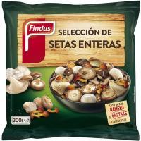 Selección de setas FINDUS, bolsa 200 g