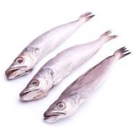 Pescadilla del País Vasco, al peso, compra mínima 500 g