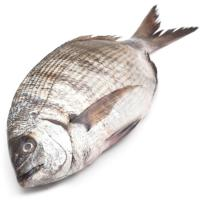 Muxarra del País Vasco, pieza al peso aprox. 1 kg