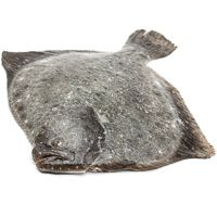 Rodaballo del País Vasco, pieza al peso aprox. 1.8 kg