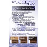 Tinte castaño muy claro N.6.00 EXCELLENCE, caja 1 ud