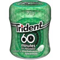 Chicle de hierbabuena Lc TRIDENT 60 Minutos, bote 72 g