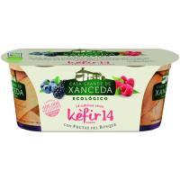 Kefir eco con frutas del bosque CASA G. DE XANCEDA, pack 2x125 g