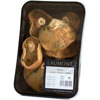 Níscalo silvestre LAUMONT, bandeja 150 g