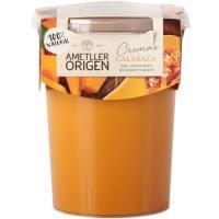 Crema de calabaza AMETLLER, tarrina 485 ml