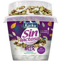 Yogur sin lactosa mix semillas KAIKU, tarrina 166 g