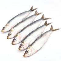 Sardina-Parrocha, al peso, compra mínima 500 g