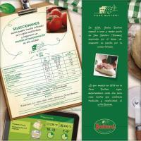 Pizza Forno Di Pietra de jamón serrano BUITONI, caja 320 g