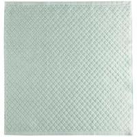 Paños de cocina verde rizo 100% algodón EROSKI, 50x50cm 2 uds