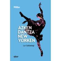 Azken dantza New Yorken,  Lur Gallastegi Zendegi, Ficción