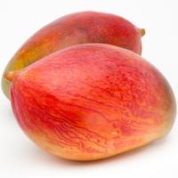 Mango, pieza al peso aprox. 500 g