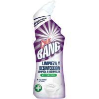Limpiador wc power gel lejía CILLIT BANG, botella 700 ml